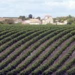 SF COGNAC - Village de Bouteville